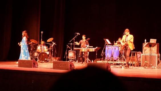 Alka Yagnik Udit Narayan Concert-19